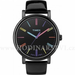 Hodinky Timex T2N790